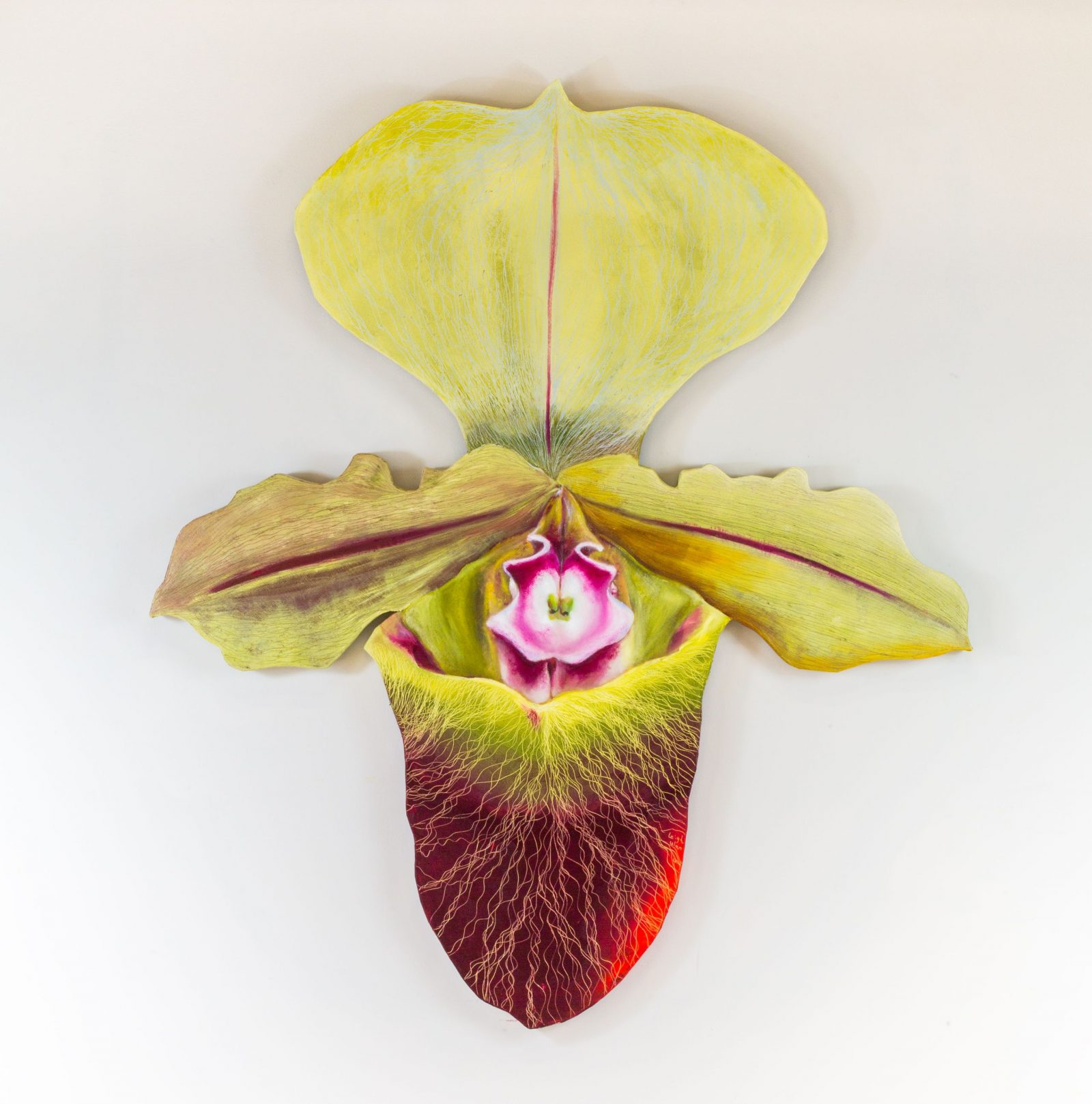 拖鞋蘭 1,Lady Slipper-1,174 x 152 cm, oil on canvas, 2014