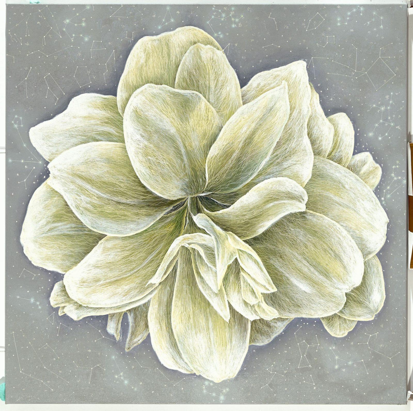 無塵 White Amaryllis, 2016